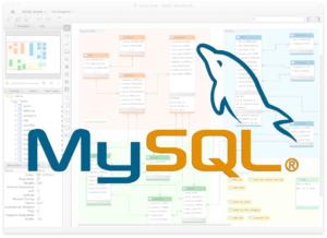 Using MySQL